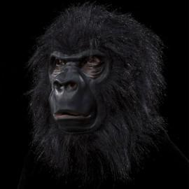 Mascara de Gorila para adulto