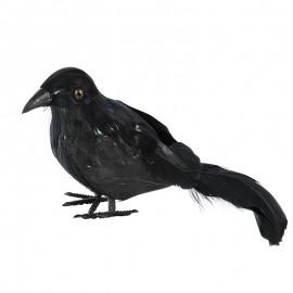 Cuervo con plumas negro