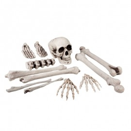 Set de Calavera y Huesos complemento